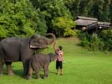 Khu nhà sàn nghỉ dưỡng cho người yêu thiên nhiên hoang dã ở Thái Lan