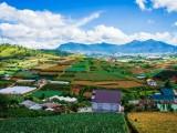Đất nền ngoại ô thành phố Đà Lạt - Nam Ban - Diện tích lớn, dưới 1 tỷ, có 100 m2 thổ cư