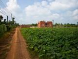 Ngôi nhà hiện đại 500 triệu ở Đồng Nai khiến nhiều người mơ ước